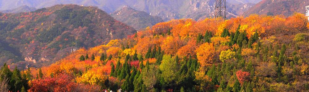崎峰山国家森林公园旅游路线