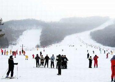 初学者滑雪全攻略