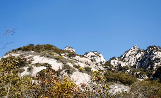 云蒙山国家森林公园以林取胜