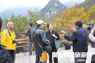 云蒙山森林公园《最美森林 探秘之旅》摄影大赛