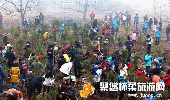 响水湖长城第四届养生植树节